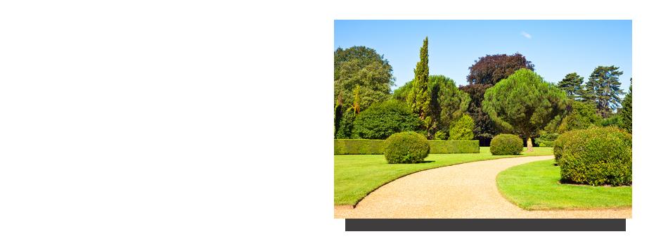 Paysagiste abattage lagage cr ation jardin entretien for Entretien jardin saint yvi